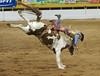 Gay Rodeo Denver, Colorado USA